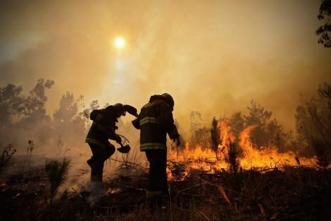 aptopix-chile-wildfires-alejandro-zonez-ap
