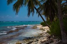 Ilha Jony Cay