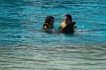 Brincando com golfinhos - Playa del Carmen