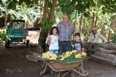 Vendedor de bananas - Viñares