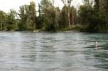 Rio Aar em Berna