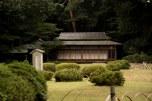 Jardim japonês em Yoyogi