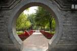 Jardim medicinal