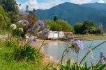 Marlborough - a caminho de Picton