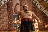 Show Maori - ilha norte